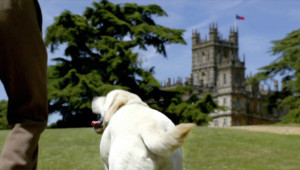 The first scene of Downton Abbey - dog butt. Unchanged although the dog this butt belongs to died in season 5.